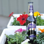 Freez Blackberry